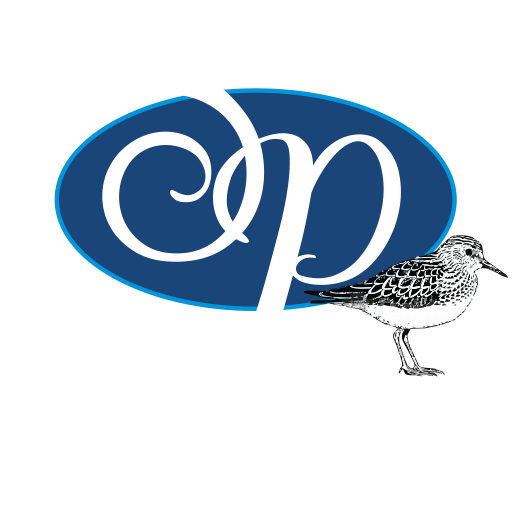 Links of Sandpiper