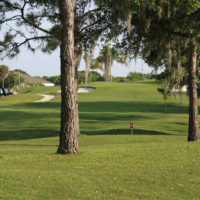 Links of Sandpiper Golf Course Lakeland, Florida